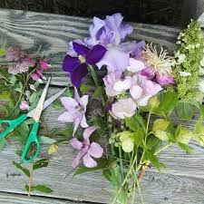 common wedding flowers the most underrated and overlooked wedding flowers defined
