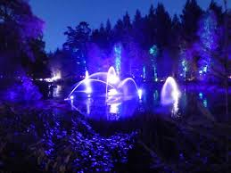 enchanted forest of light tickets enchanted forest pitlochry monkey and mouse