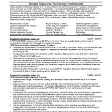 systems analyst resume doc resume objective system analyst sr resume example sr cover letter