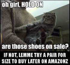 Buy All The Shoes Meme - cat memes i can has cheezburger