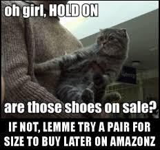 If The Shoe Fits Meme - cat memes i can has cheezburger
