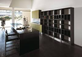 Contemporary Kitchen Colors 225 Modern Kitchens And 25 Contemporary Kitchen Designs In Black