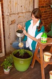 caring for vegetables in pots bonnie plants