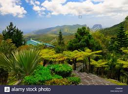 Restaurants Near Botanical Gardens View Forest And Mountains From The Varangue Sur Morne