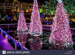 beautiful christmas tree lights and other holiday illuminations at