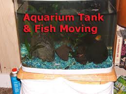 aquarium power failure tank moving
