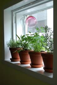 Window Sill Planter by Lawn Garden Alluring Kitchen Garden Glass Bulb Haningin Ornamental