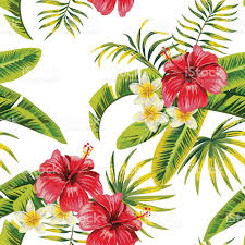 flowers and plants tropical flowers and plants pattern stock vector art 584248748
