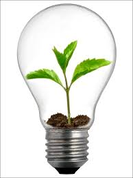 light and plant growth led grow lights tips for successful plant growth