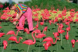 photo gallery an homage to the noble plastic pink flamingo