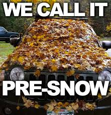 Autumn Memes - 14 fall memes so you can usher in the greatest season of them all