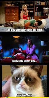 Gifts For Meme - grumpycat meme for more grumpy cat stuff gifts and meme visit www