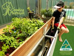 Raised Garden Bed With Bench Seating Raised Garden Bed With Seat Australian Made And Has A 12 Year