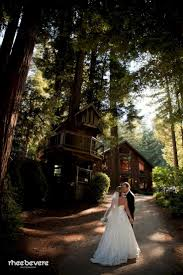 redwood forest wedding venue 25 beste ideeën redwood forest wedding op