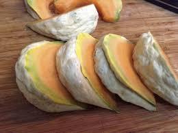 fond blanc en cuisine prescott fond blanc melon organic restoration seeds