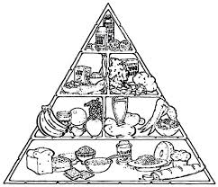 food pyramid coloring page coloring page glum me best of my plate