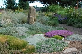 rock gardens revealed a gardener u0027s thoughts u0026 fancies