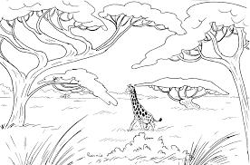95 dessins de coloriage animaux de la savane à imprimer