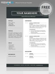 Resume Template Docx Resume Format Docx Professional Resumes Sample Online