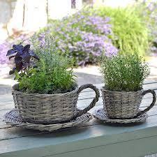 outdoor herb garden kit herb garden kit outdoor large garden