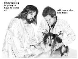 Jesus Is A Jerk Meme - jesus is a jerk album on imgur