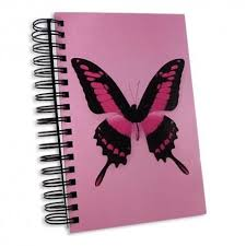 jumbo 300 page notebook with pink butterfly cover journal diary