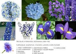 Flowers For Weddings Color Series Blue Flowers For Weddings Dahlia Floral Design