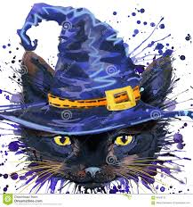 free cat halloween background pic halloween cat witch watercolor illustration background stock