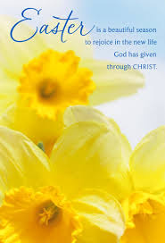 yellow daffodils religious easter cards pack of 6 boxed cards