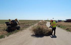tumbleweed eater u0027 works to take a bite out of the invasive plant