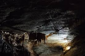 Minnesota wildlife tours images Mystery cave niagara cave tours mn cave tours jpg