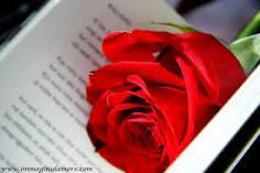 Poezi Me Foto Italiane Images?q=tbn:ANd9GcQ7gyDma08sAQ8C_sKs8eQZWhvTrahEcOFKOV2mHDnATTIVVIRRVBkiTyLKJQ