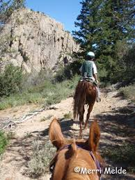 making friends in the ghost town of silver city idaho district equestrian travel articles on the trail of the old gold miners