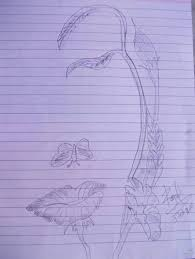 pencil sketch of flower desipainters com haammss