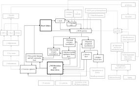 detailing peripheral arterial tonometry in heart failure an