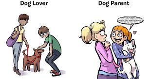 Dog Lover Meme - 7 things that happen when you turn from dog lover to dog parent
