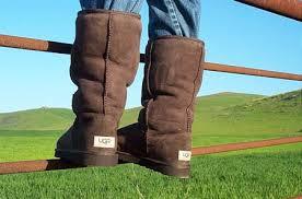 ugg s boots chocolate ugg chocolate womens boot sheepskinshoes com