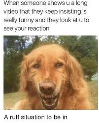 Really Funny Memes - 25 best memes about really funny really funny memes