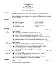 Product Management Resume Samples by Example Of Personal Resume Template Fascinating Product Marketing