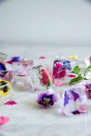 Floral Food by 34 Best Flower Ice Cubes Images On Pinterest Flower Ice Cubes