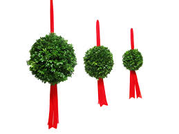 Live Greenery Christmas Decorations by Christmas Balls Mantelpieces Candle Rings Mailbox Hugger Etc