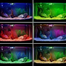 color changing led strip lights with remote colour changing led strip light aquarium fish tank set