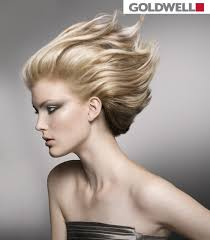 goldwell 5rr maxx haircolor pictures 153 best goldwell images on pinterest hair colour hair colours