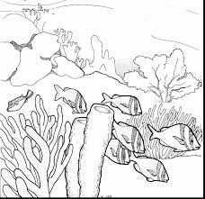 awesome drawing coral reef coloring page with coral reef coloring