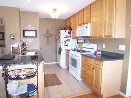 kitchen cabinets best painting oak cabinets design paint oak