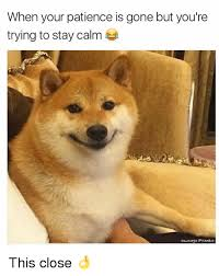Calm Meme - when your patience is gone but you re trying to stay calm own age