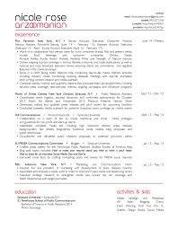 Resume Basics by Resume U2014 Media Maven Expert Communicator