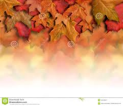 free halloween background border images red orange fall leaves background border royalty free stock