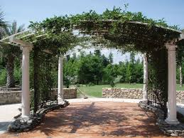 arched trellis ideas design accessories u0026 pictures zillow