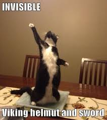 Invisible Cat Meme - invisible viking helmut and sword lolcats lol cat memes